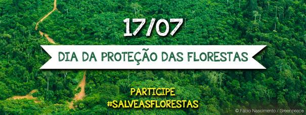 Dia de proteção das florestas. É preciso ter consciência!
