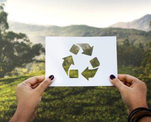 Ecologia e cartão rígido da Horlle