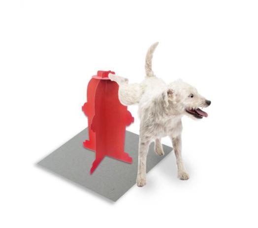 higipet cachorro
