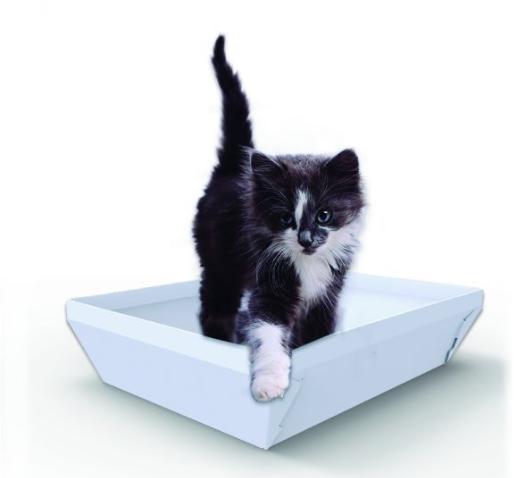 higipet gato